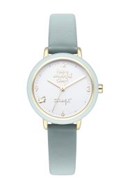 RELOJ MR WONDERFUL WATCH WONDERFUL TIME / IPG&GREEN WR25200
